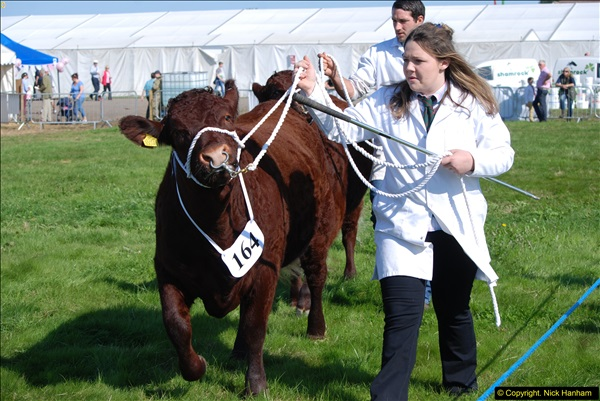 2015-09-06 The Dorset County Show 2015.  (279)279