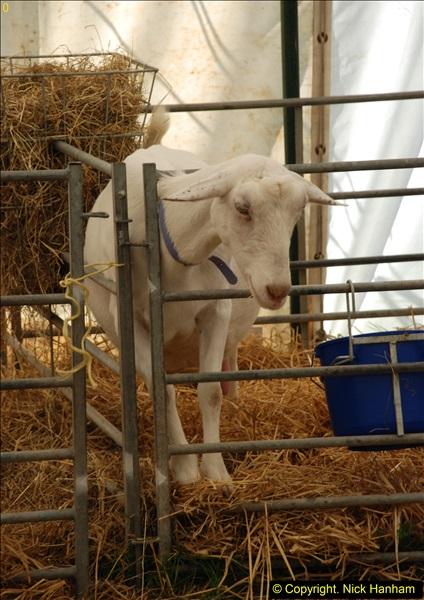 2015-09-06 The Dorset County Show 2015.  (306)306