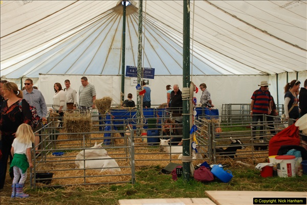 2015-09-06 The Dorset County Show 2015.  (307)307