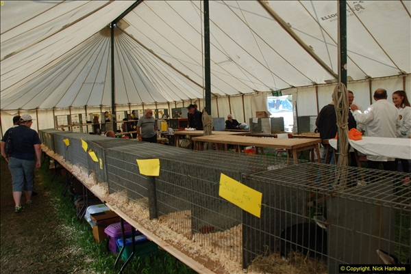 2015-09-06 The Dorset County Show 2015.  (67)067