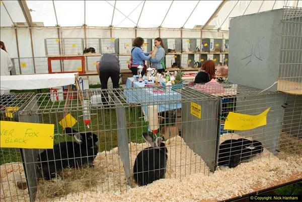 2015-09-06 The Dorset County Show 2015.  (68)068