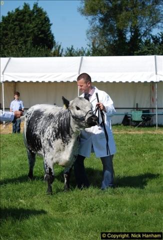 2015-09-06 The Dorset County Show 2015.  (272)272