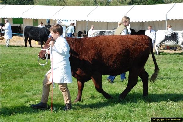 2015-09-06 The Dorset County Show 2015.  (286)286