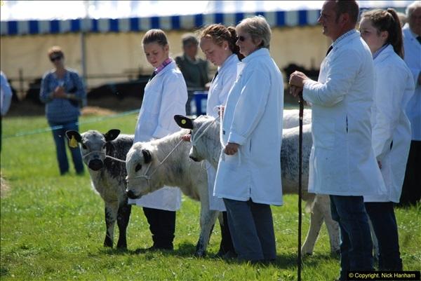 2015-09-06 The Dorset County Show 2015.  (289)289
