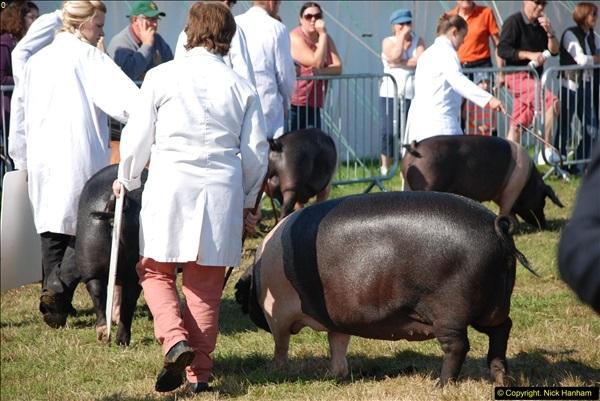 2015-09-06 The Dorset County Show 2015.  (297)297