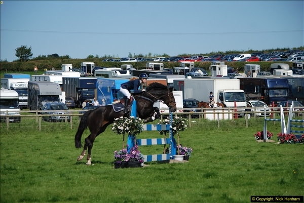 2015-09-06 The Dorset County Show 2015.  (411)411