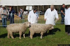 2015-09-06 The Dorset County Show 2015.  (258)258