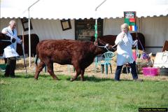 2015-09-06 The Dorset County Show 2015.  (277)277