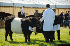 2015-09-06 The Dorset County Show 2015.  (282)282