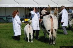 2015-09-06 The Dorset County Show 2015.  (284)284