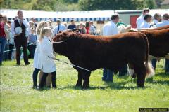 2015-09-06 The Dorset County Show 2015.  (288)288