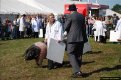 2015-09-06 The Dorset County Show 2015.  (295)295