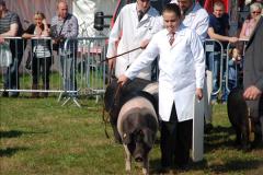 2015-09-06 The Dorset County Show 2015.  (298)298