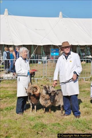 2017-09-02 The Dorset County Show 2017.  (175)175
