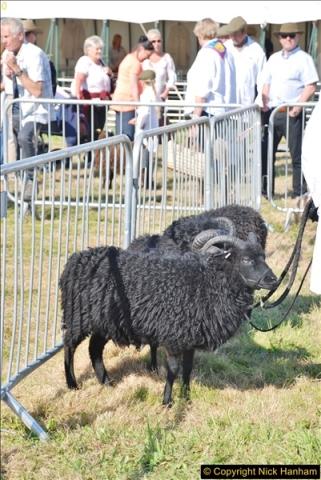 2017-09-02 The Dorset County Show 2017.  (176)176