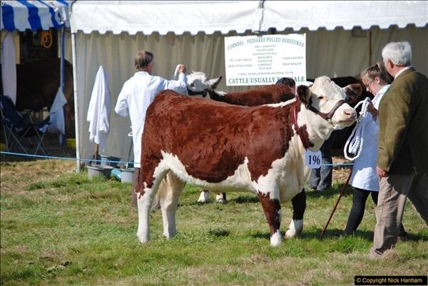 2017-09-02 The Dorset County Show 2017.  (184)184