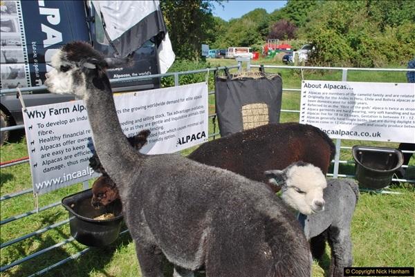 2017-09-02 The Dorset County Show 2017.  (285)285