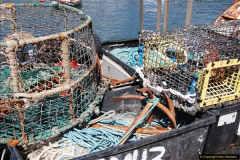 2017-04-19 Lyme Regis, Dorset.  (21)021