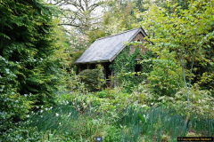 2017-04-20 Rosemoor (RHS) Great Torrington, Devon.  (133)188
