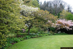 2017-04-20 Rosemoor (RHS) Great Torrington, Devon.  (135)190