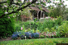 2017-04-20 Rosemoor (RHS) Great Torrington, Devon.  (161)216