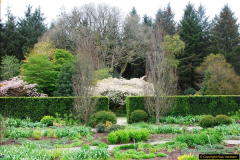 2017-04-20 Rosemoor (RHS) Great Torrington, Devon.  (22)077