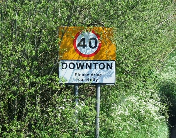 2014-05-03 Downton Cuckoo Fair, Downton, Wiltshire.  (8)008