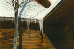 1991-02-17 Edelweiss Valley Ski Resort near Ottawa, Ontario.  (12)014