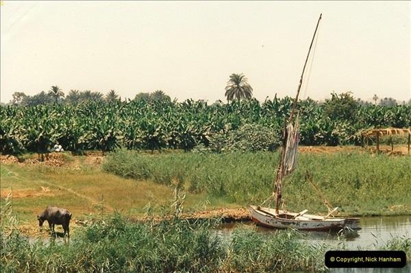 1994-08-02 to 16 Egypt. Luxor. (208)208