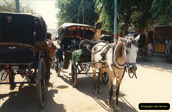 1994-08-02 to 16 Egypt. Luxor. (209)209