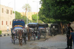 May 2006 Egypt.  (5)005