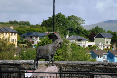 2015-05-31 Killarney and The Ring of Kerry.  (22)022