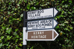 2015-05-31 Killarney and The Ring of Kerry.  (31)031