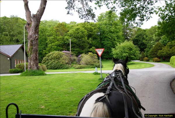 2015-05-30 Killarney and The Ring of Kerry.  (15)015