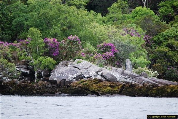 2015-05-30 Killarney and The Ring of Kerry.  (76)076