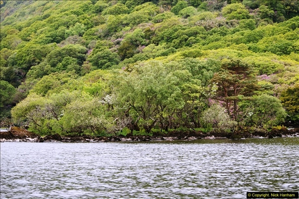 2015-05-30 Killarney and The Ring of Kerry.  (78)078