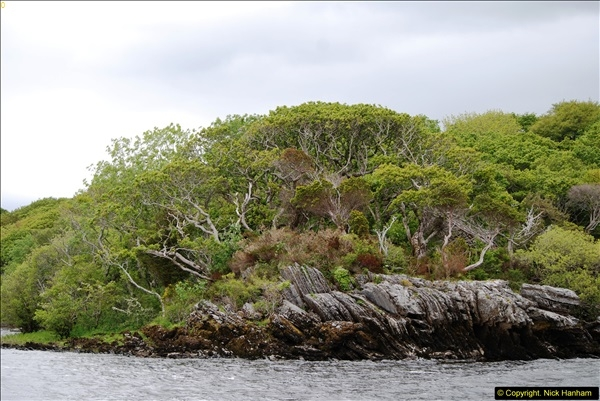 2015-05-30 Killarney and The Ring of Kerry.  (84)084