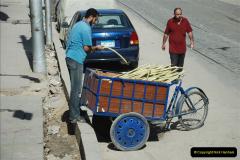 2010-11-06 Alexandria, Egypt.  (39)119