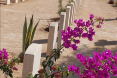 2010-11-05 British Graves at  El Alamein  (16)037
