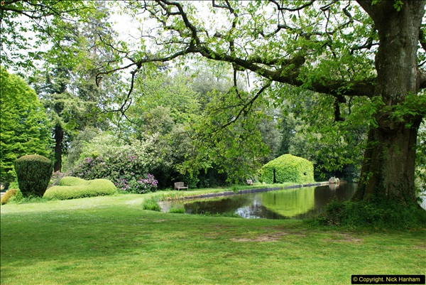 2016-05-27 Forde Abbey, Dorset. (114)114
