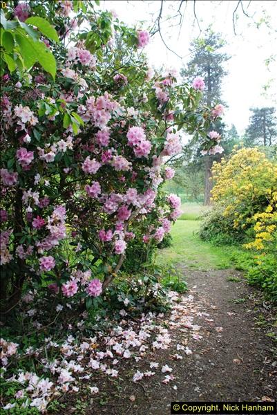 2016-05-27 Forde Abbey, Dorset. (90)090