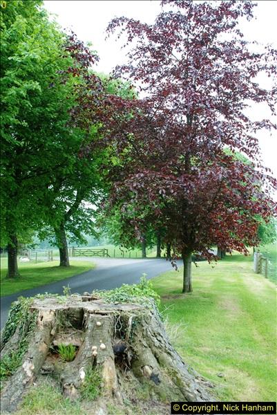 2016-05-28 Cricket St. Thomas, Somerset.  (36)166