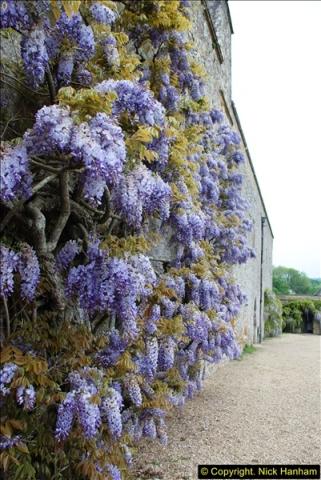 2016-05-27 Forde Abbey, Dorset. (7)007