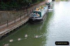 2011-08-06 The Lee Navigation, St. Margarets, Hertfordshire.  (1)197