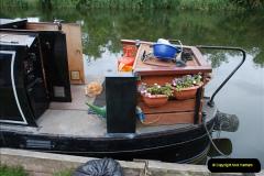2011-08-06 The Lee Navigation, St. Margarets, Hertfordshire.  (48)244