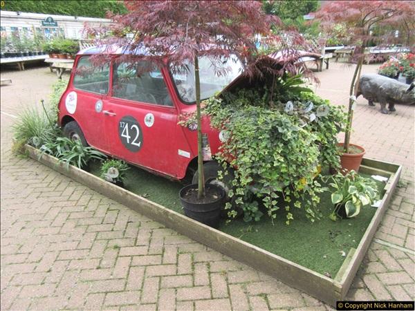 2018-07-11 Stewart's Garden Centre, Broomhill, Wimborne, Dorset.  (1)185