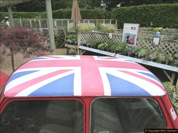 2018-07-11 Stewart's Garden Centre, Broomhill, Wimborne, Dorset.  (3)187