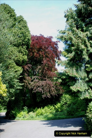 2019-05-16 Farnham, Surrey. (25) Farnham Castle. 034