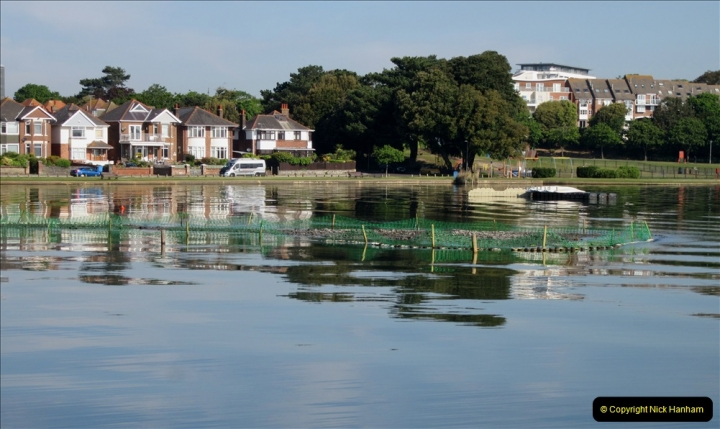 2019-05-23 Poole Park, Poole, Dorset. (10) 056