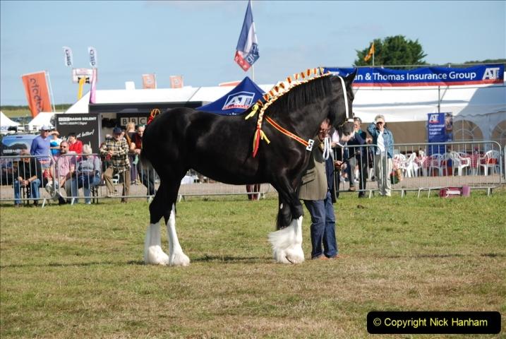 2019-09-08 Dorset County Show @ Dorchester. (221)